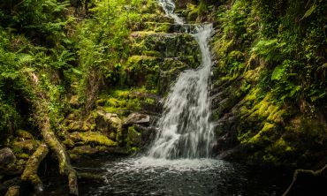 This is a half day photography tour in and around the world renowned Killarney National Park.